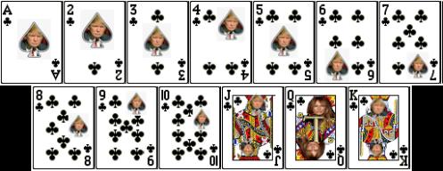 TrumpCard7
