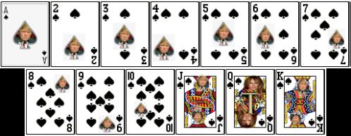 TrumpCard8